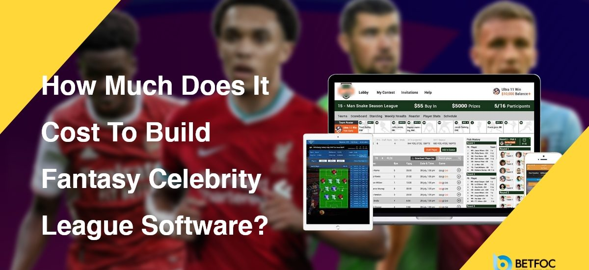 How Much Does It Cost To Build Fantasy Celebrity League Software?